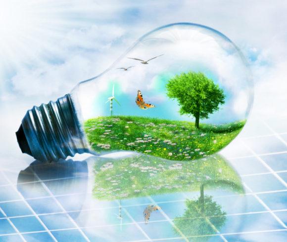 Energia verde dai rifiuti: il business del futuro