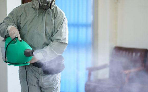 Ecologia Oggi: tutti i benefici dell'ozono come soluzione per igienizzare e vivere meglio